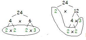 Alternative factor tree for 24